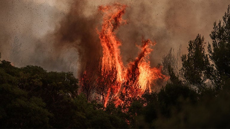 Οδηγίες Επιβίωσης από Πυρκαγιά